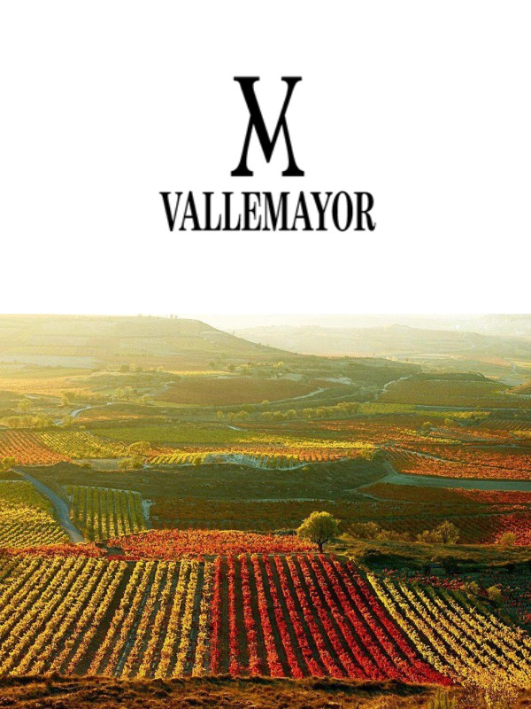 BODEGAS VALLEMAYOR | Fuenmayor