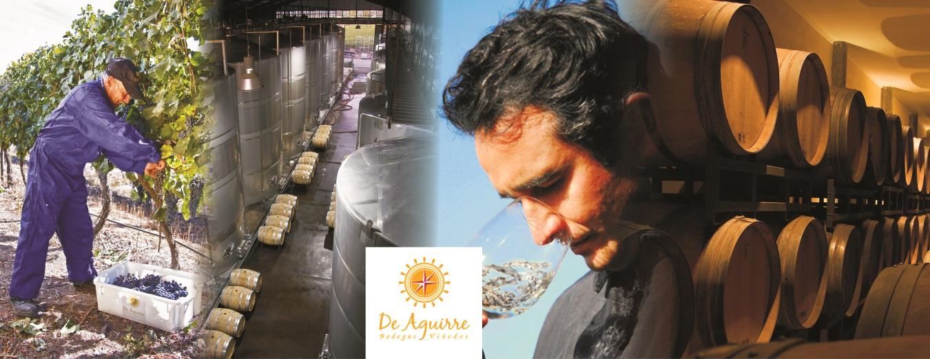 De Aguirre Winery