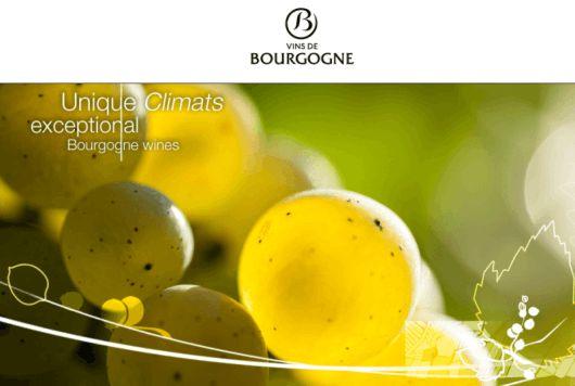 Learning With EWGA Wines - Burgundy