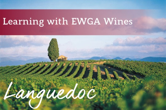 Learning With EWGA Wines - Languedoc