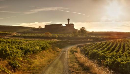 Learning With EWGA Wines - Rioja, Spain