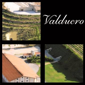 Bodegas Valduero