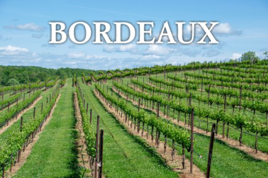 Learning With EWGA Wines - Bordeaux