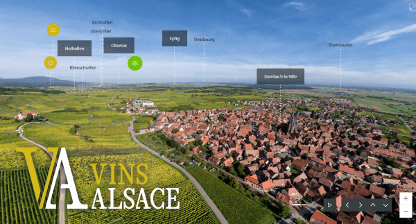 Learning With EWGA Wines - Alsace, France