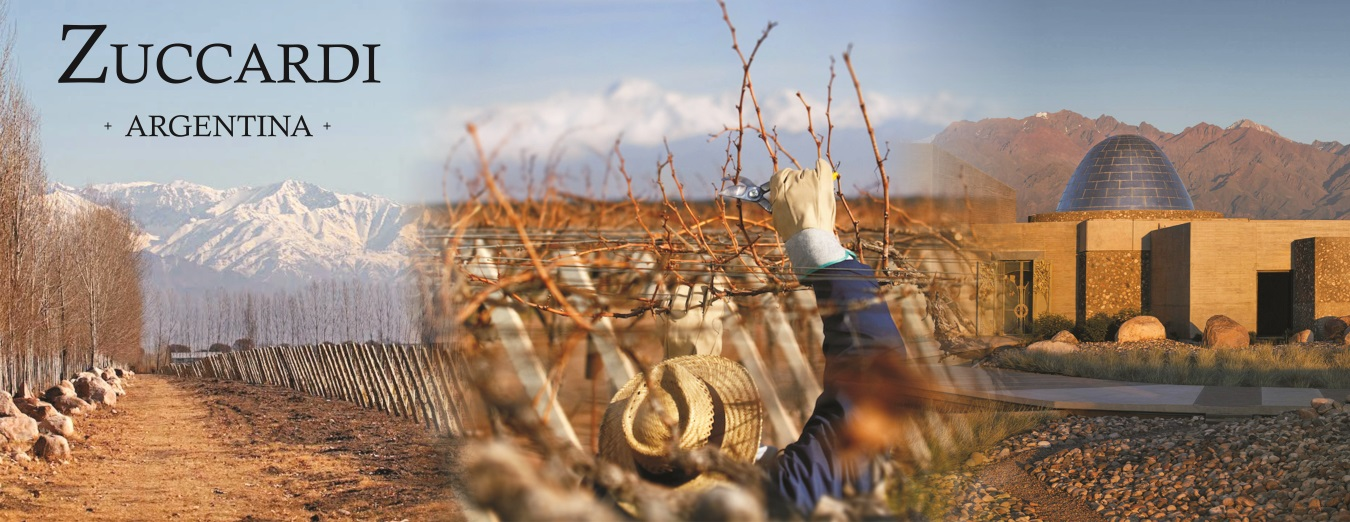 Zuccardi Winery